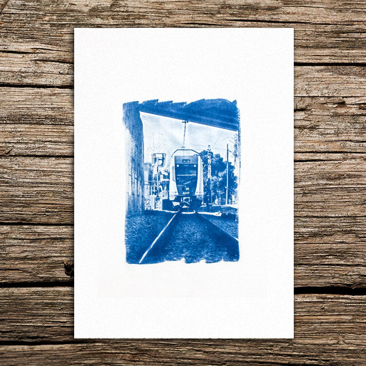 Back track Cyanotype