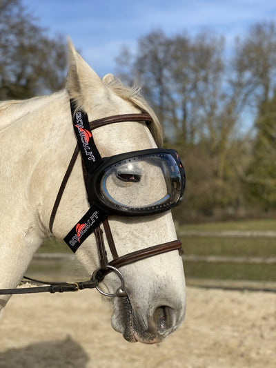 Masque cheval eVysor eQuick anti-UV 100% contre l'uvéite - transparent - Equidiva