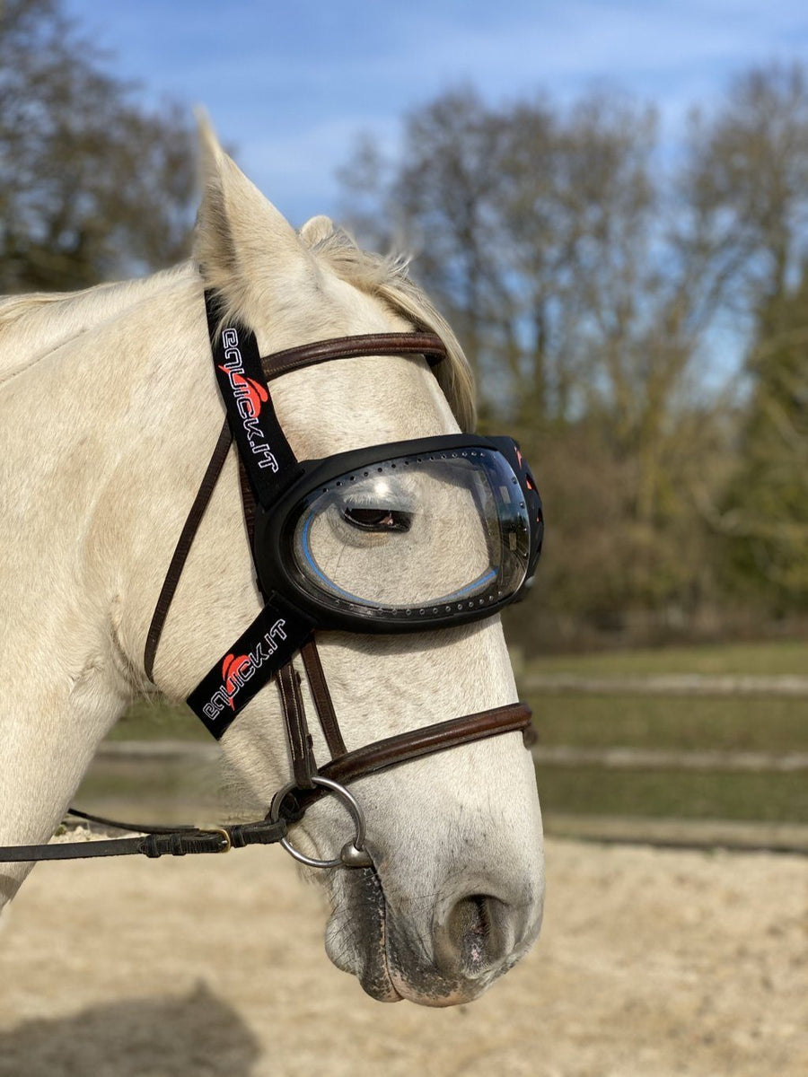 Masque cheval eVysor eQuick anti-UV 70% contre l'uvéite - transparent - Equidiva