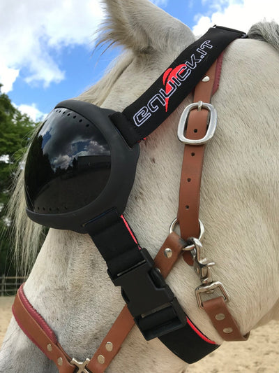Masque cheval eVysor eQuick anti-UV 100% contre l'uvéite - dark - Equidiva