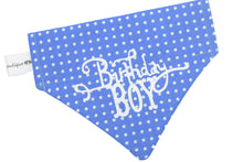 Load image into Gallery viewer, Polka dot Birthday Boy