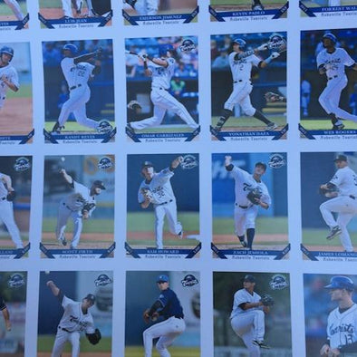 Asheville Tourists 2015 Asheville Tourists Team Set
