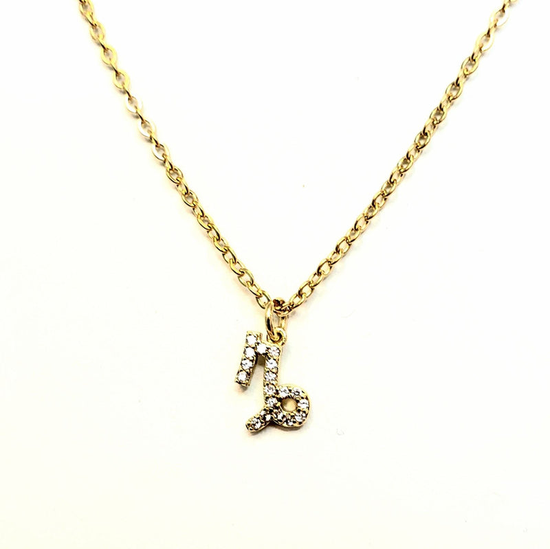 Zodiac Sign Name Necklace