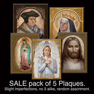 SALE pack of 5 Assorted Plaques