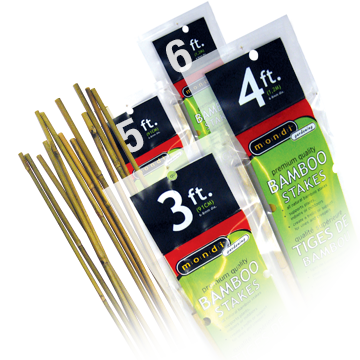 Bamboo Stakes - 8mm 4ft  - 25 pack
