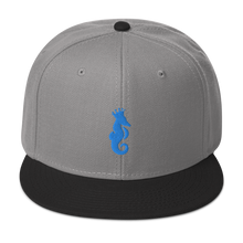 Load image into Gallery viewer, Dwayne Elliott Collection Snapback Hat - Aqua/Teal Seahorse Logo - Dwayne Elliott Collection