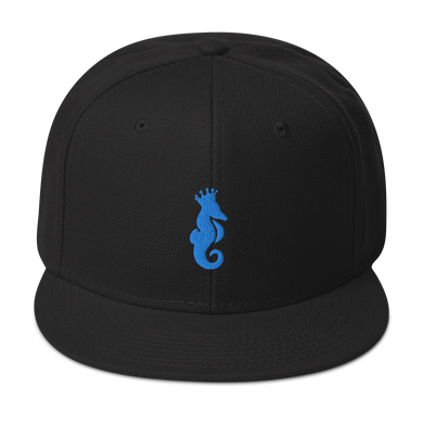 Dwayne Elliott Collection Snapback Hat - Aqua/Teal Seahorse Logo - Dwayne Elliott Collection