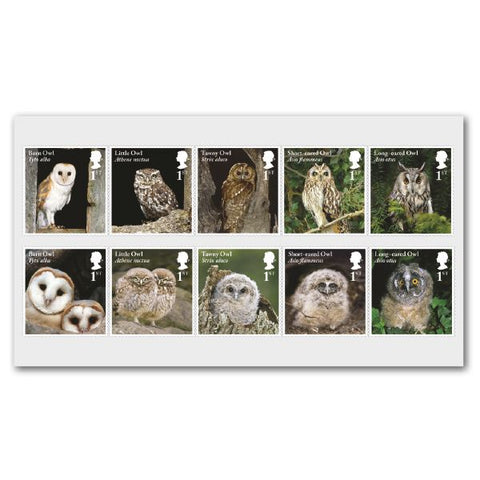 Owls Mint Stamp Set