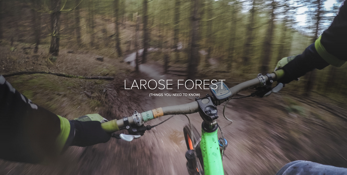 Looking for somewhere new to ride?  Try Larose Forest!