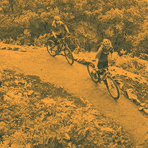 VeloMSM MTB Adult Skills Sessions