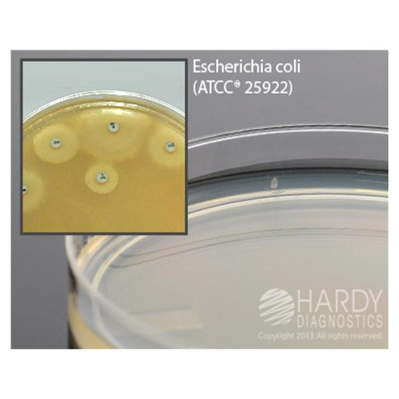 Culture Mueller-Hinton Agar 10/Pk
