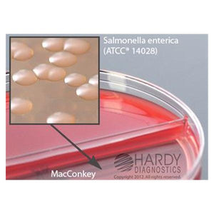 Blood Agar Culture Blood Agar/ MacConkey Biplate 10/Pk