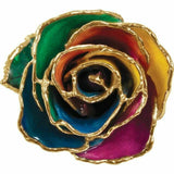 Rainbow 24K Gold REAL Rose