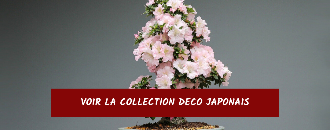 Decoration Japonaise