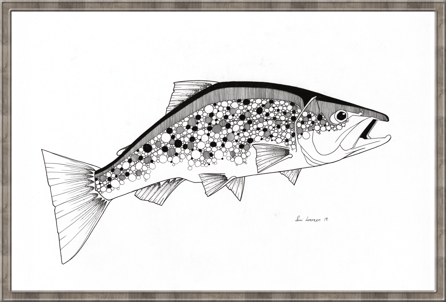 Trout dots and spots