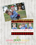 Buffalo and Gold - Christmas Photo Card