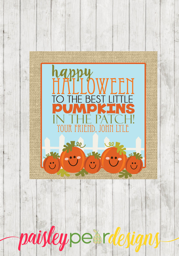 Pumpkin Patch Tag
