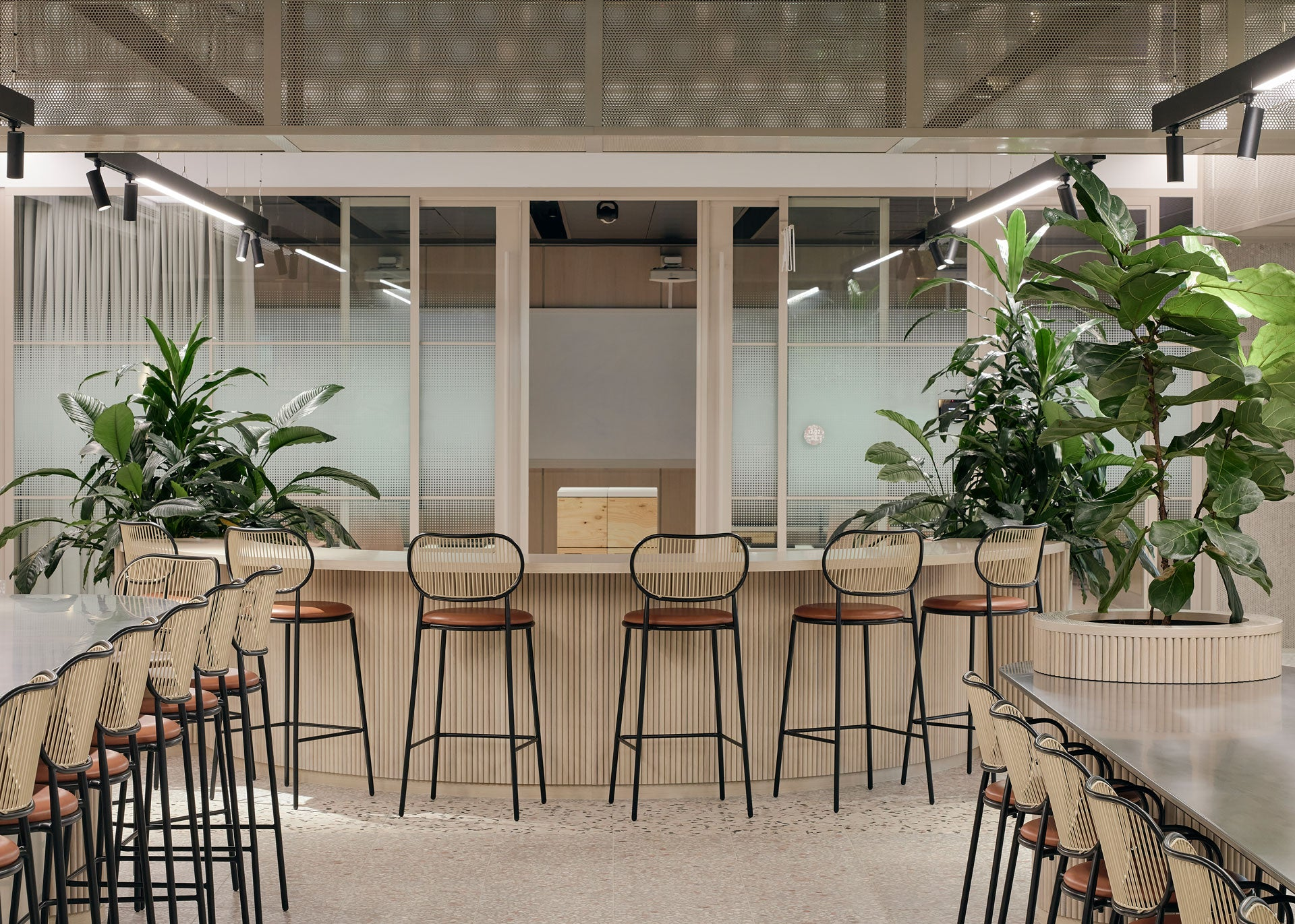 Piper Chairs   Herston Biofabrication Institution by Hassell   DesignByThem
