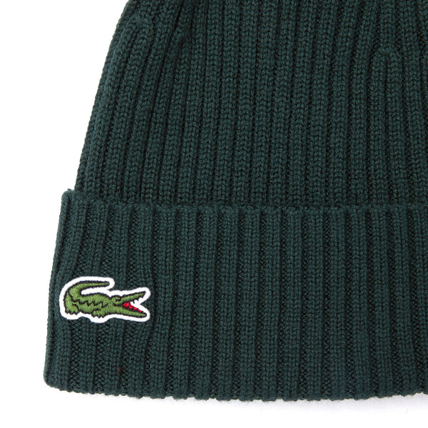 Dark Slate Gray Knitted Cap // Sinople Green Bonnets Lacoste