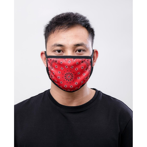 Hudson Solid Paisley Face Mask in Red