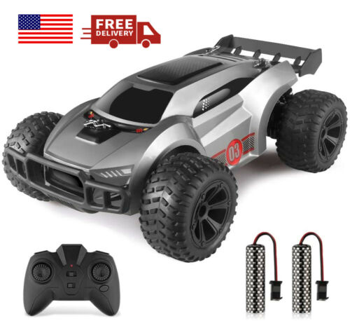 netjett Remote Control Car 1/22 High Speed RC Car with 2 Rechargeable Batteries
