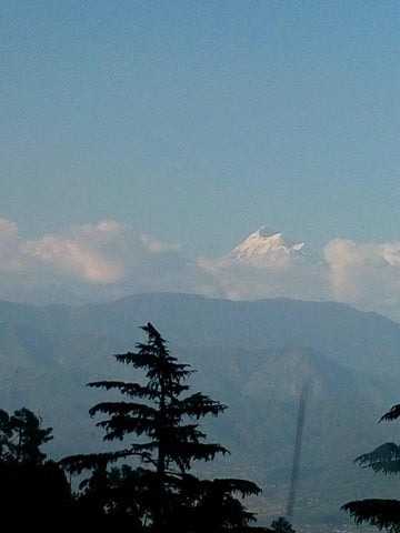 A-view-of-the-himalayas-from-kasauli-www.serendipityholidays.in-hyderabad-telangana-India