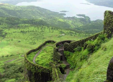 Silent-Valley-National-Park-kerala-serendipity-holidays-hyderabad-telangana-india-800-800