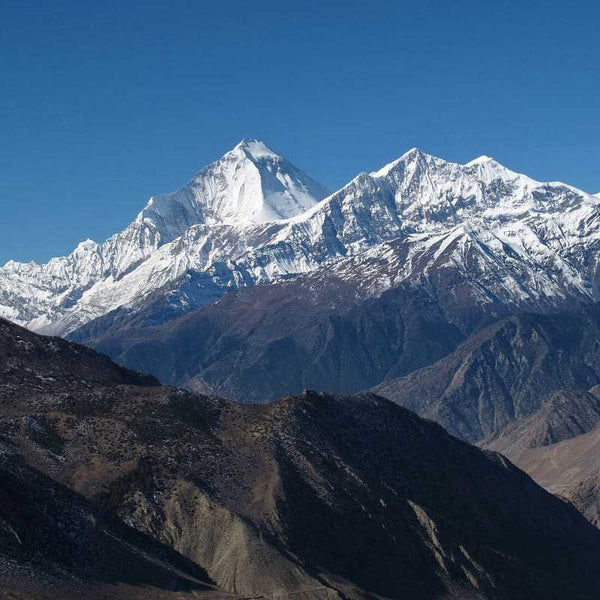 4 NIGHTS 5 DAYS NEPAL TOUR PACKAGES