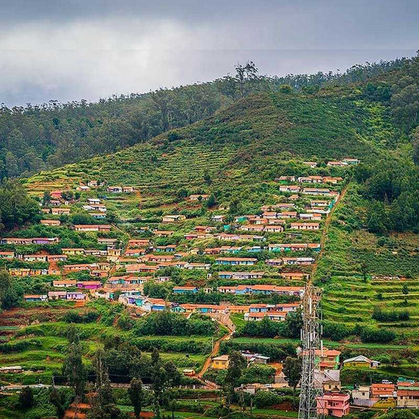 KODAIKANAL 2 NIGHTS 3 DAYS
