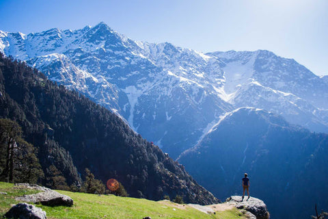 SHIMLA KULLU MANALI 6 NIGHTS 7 DAYS TOUR PACKAGE - 2019