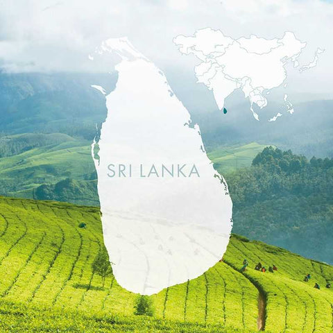 SRI LANKA TOUR PACKAGE 4 NIGHTS 5 DAYS FROM HYDERABAD