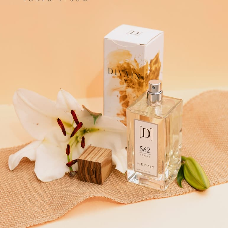 Photo de l'emballage du parfum d'équivalence DIVAIN 562