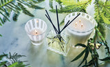 NEST Fragrances Bamboo Candle and Reed Diffuser
