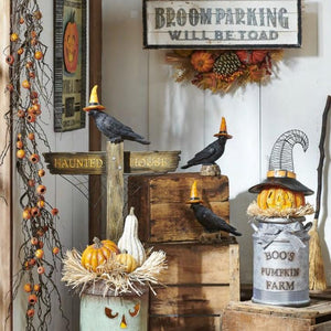 RAZ Imports Boo's Pumpkin Farm Lighted Arrangement
