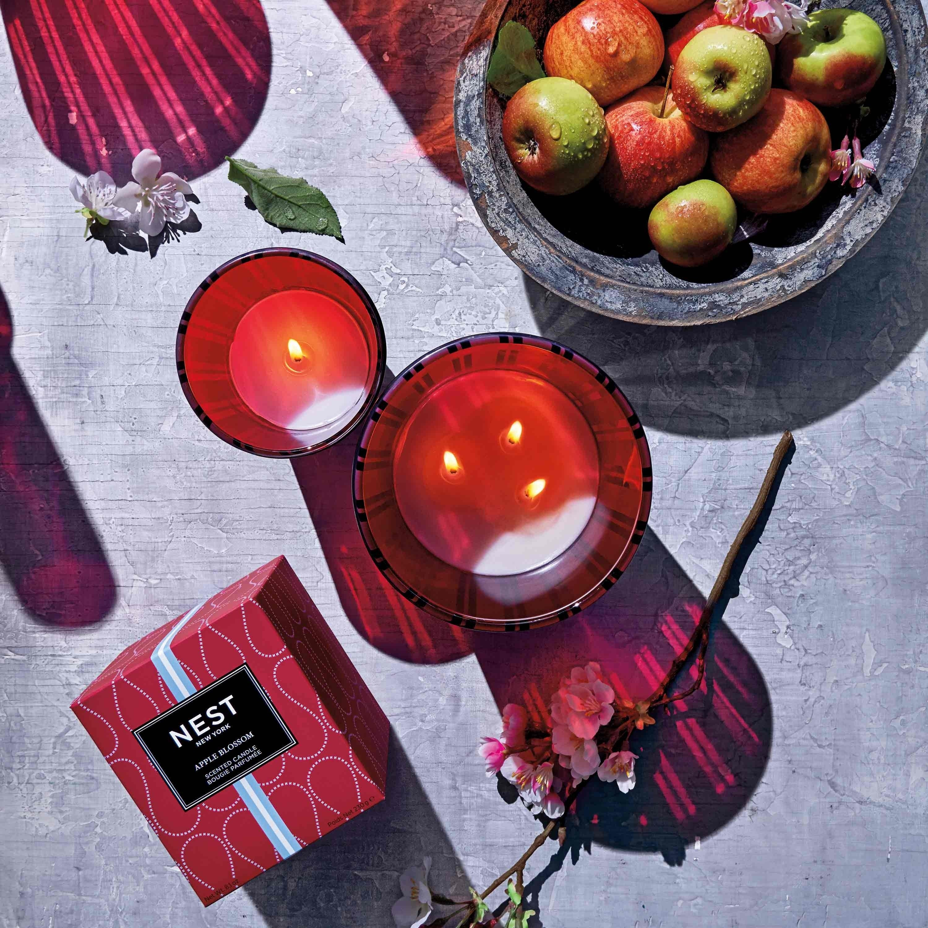 NEST Fragrances Apple Blossom Candles and Reed Diffuser Nestled Amongst a Bowl of Apples and Flowering Apple Twig