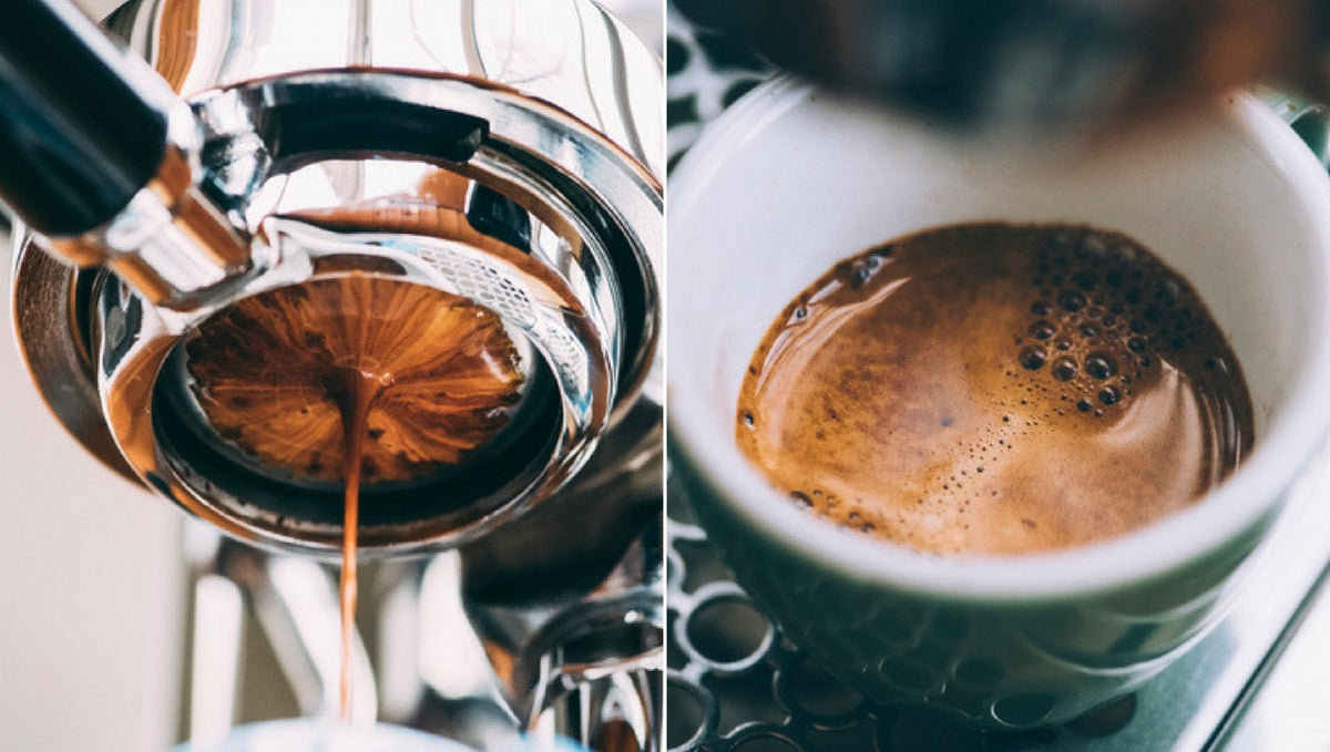What Makes Robusta Coffee Different