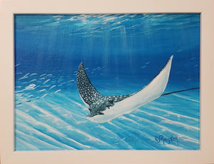 """Eagle Ray"" - Original"