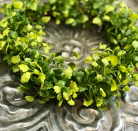 Maiden Hair Fern Wreath