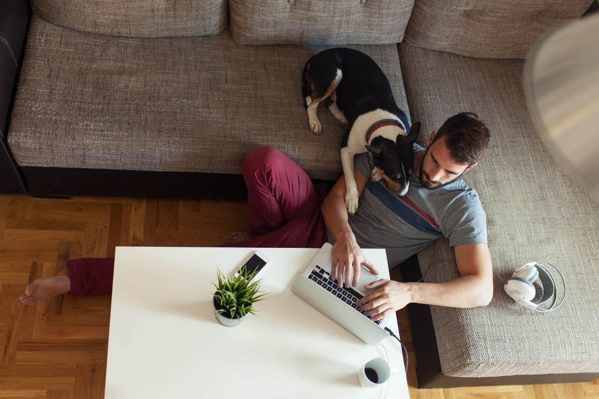 Ways to Make Working From Home Fun | Nomad Internet