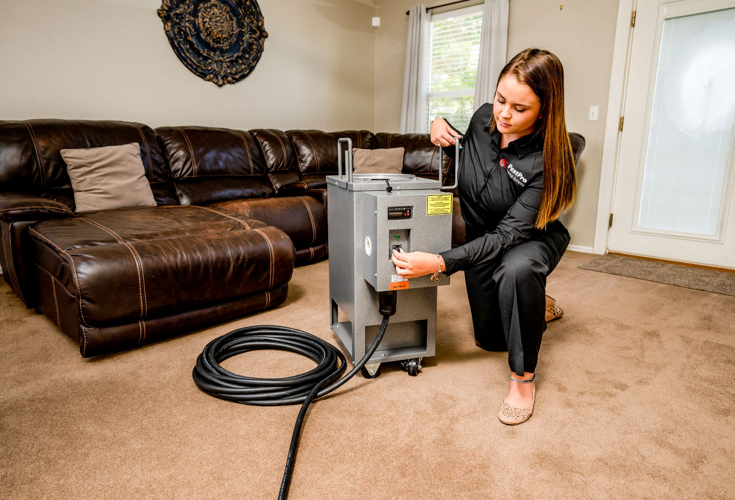 Residential Bed Bug Heater Solutions