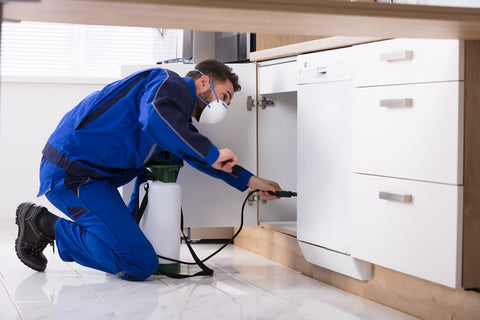 Pest professional spraying pesticides inside a cabinet to compare not using toxic chemicals using bed bug heaters