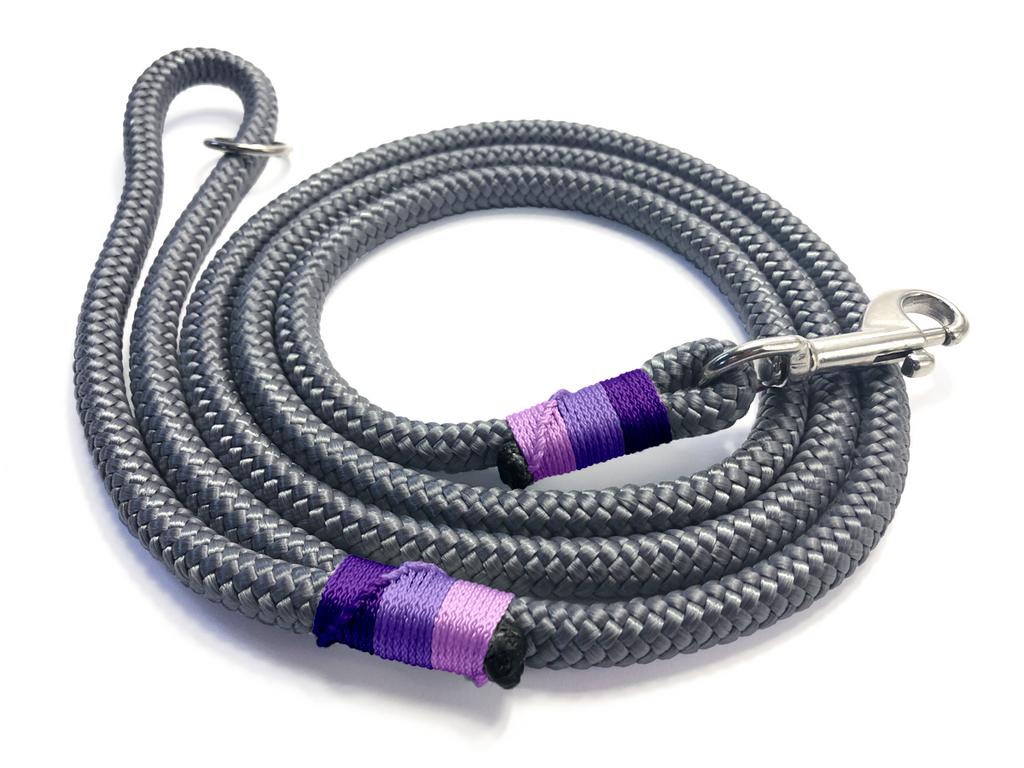 Designed For You - Clip Lead - Charcoal Pinks