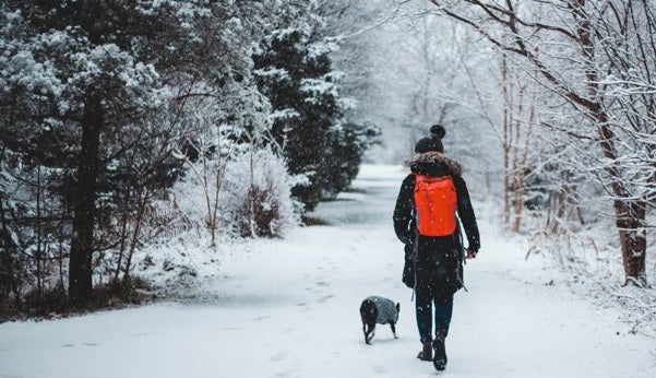 Wrap up warm on winter walks with your dog.