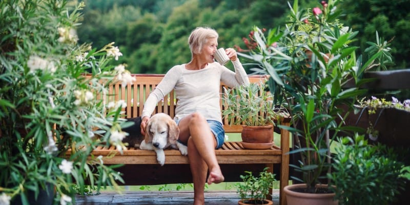 Woman resting on bench with dog and hot drink
