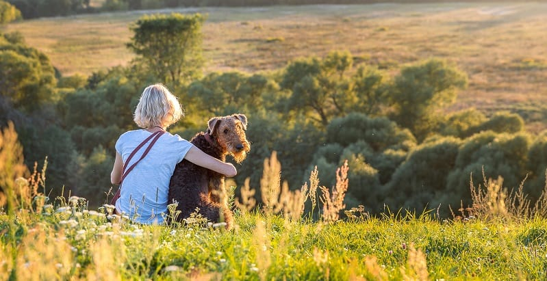 Lady and her Airedale on a hill