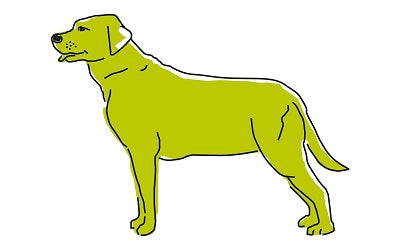 Overweight dog illustration
