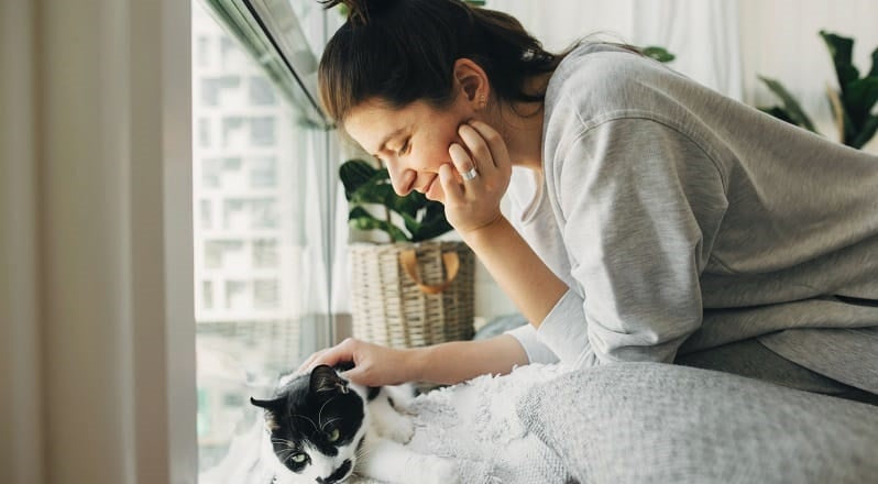 Cat and owner by window