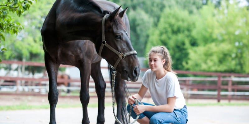 girl with black horse