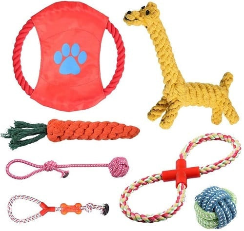 Chew toys for puppies