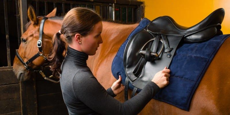 Fitting a horse's saddle